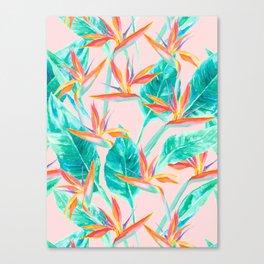 Birds of Paradise Blush Canvas Print