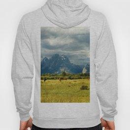 Horses and the Grand Teton Hoody