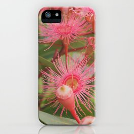 Pink gumnut blossoms 4 iPhone Case