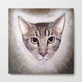 Cat #2 (Sid) Metal Print