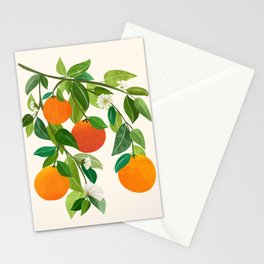Oranges and Blossoms II / Tropical Fruit Illustration Stationery Cards