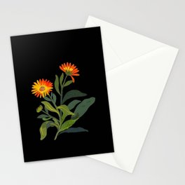 Calendula Officinalis Mary Delany Floral Paper Collage Delicate Vintage Flowers Stationery Cards