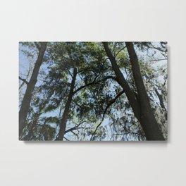Florida Sky (01) Metal Print