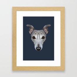 Whippet // Navy Framed Art Print