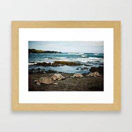 Hawaii Black Sand Beach with Sea Turtles Framed Art Print