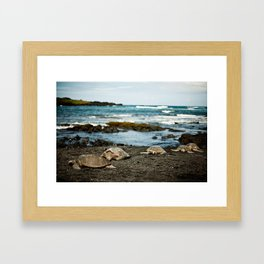 Hawaii Black Sand Beach with Sea Turtles Framed Art Print