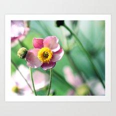sunny flower ☀ Art Print