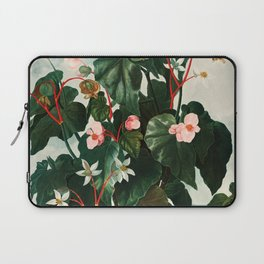 Robert John Thornton - The Oblique–Leaved Begonia Laptop Sleeve