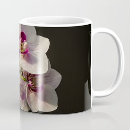 Orchid Branch Coffee Mug