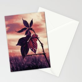 Grabbing Life By The Thorns Stationery Cards