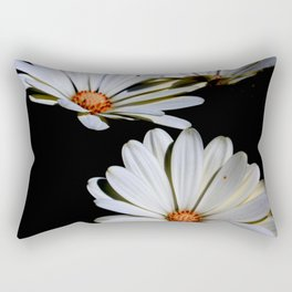 White African Daisies Isolated on Black Rectangular Pillow