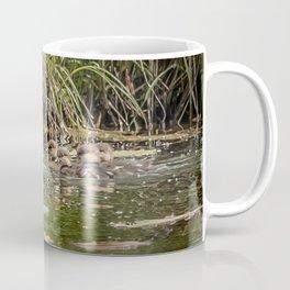 Merganser Family Coffee Mug
