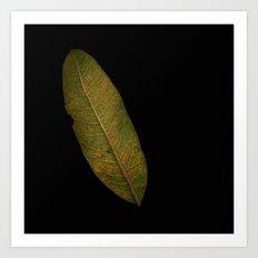 'Scanned Leaf 2' Art Print