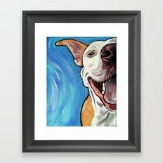 Smiling Pit Bull  Framed Art Print