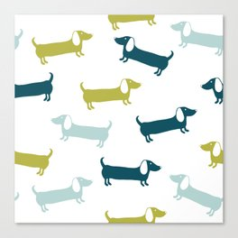 Lovely dachshunds in great colors Canvas Print