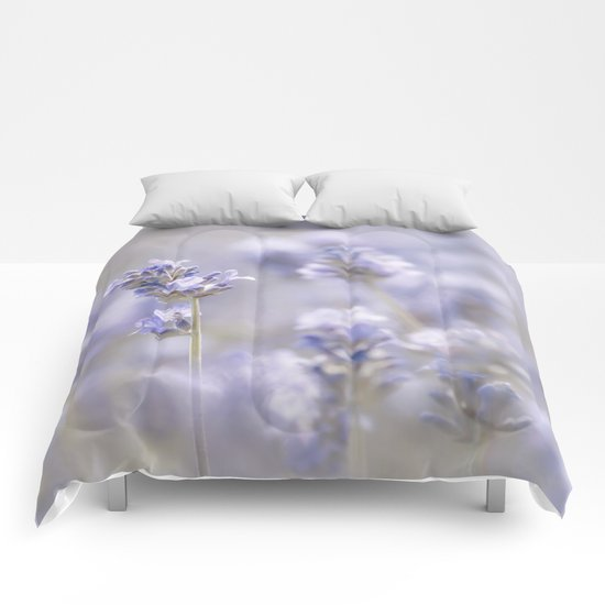 Sweet Lavender Comforters
