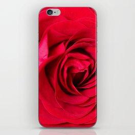 Red Rose Close-up #decor #society6 #buyart iPhone Skin