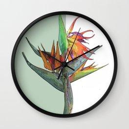 Ave del Paraíso Wall Clock