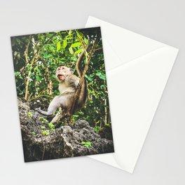 Cute Jungle Monkey Stationery Cards