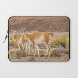 Group of Guanacos at Patagonia, Argentina Laptop Sleeve