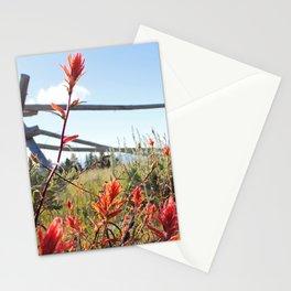 Paintbrush5068 Stationery Cards