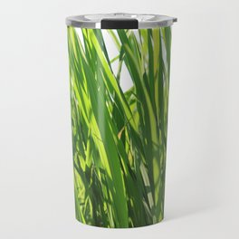 Large reeds leaves in a cane grove Travel Mug