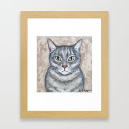 Tabby Cat Framed Art Print