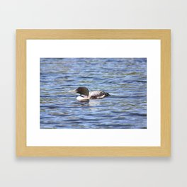 Red Eyes, Blue Water Photo Framed Art Print