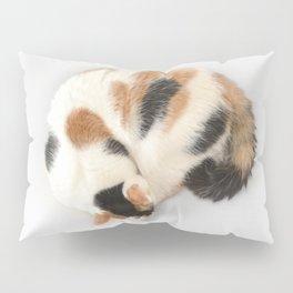 Sleeping Calico Cat Pillow Sham