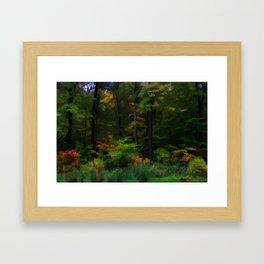 Backyard Beauty Framed Art Print