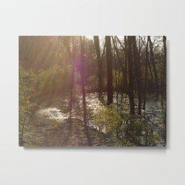 Nosferatu Forest Metal Print