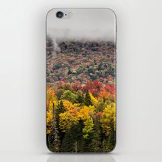layers of fall iPhone & iPod Skin