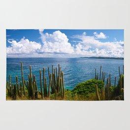 Ocean Coast Rug