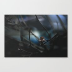 it was cold, but we didn't mind Canvas Print