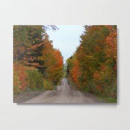 Rolling Hills in Fall Metal Print