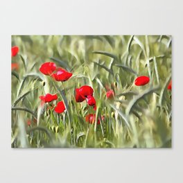 Corn Poppies Canvas Print