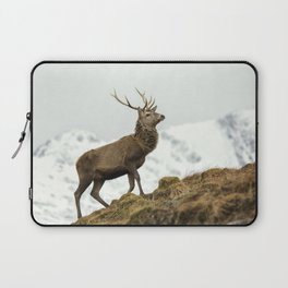 Red Deer Stag in Winter Laptop Sleeve