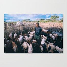 Ekai's chores Canvas Print
