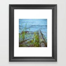 flowers by the waterline Framed Art Print