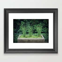 Water Grass Framed Art Print
