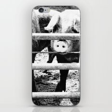 Pig Farm 2 iPhone & iPod Skin