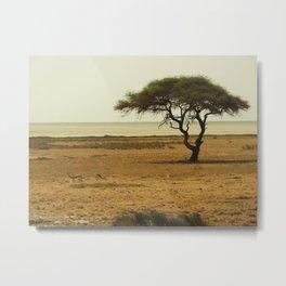 African Savannah Metal Print