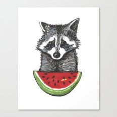 Racoon and watermelon Canvas Print