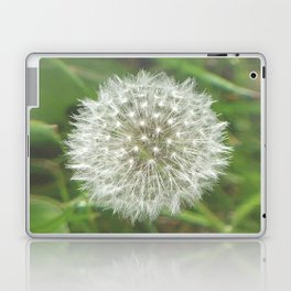 Dandelion Seedhead Laptop & iPad Skin