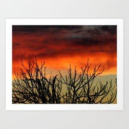 Burning branches Art Print