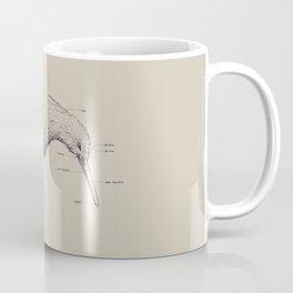 Kiwi Anatomy Coffee Mug