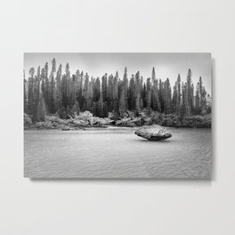 Beautiful pine forest view at Natural Pool in black and white. Metal Print