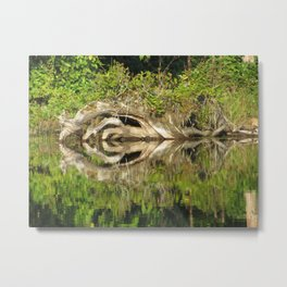 Yoni of the Lake Metal Print