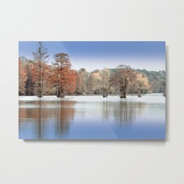 Chilly Morn Metal Print