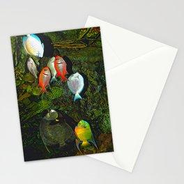 At the Aquarium Stationery Cards